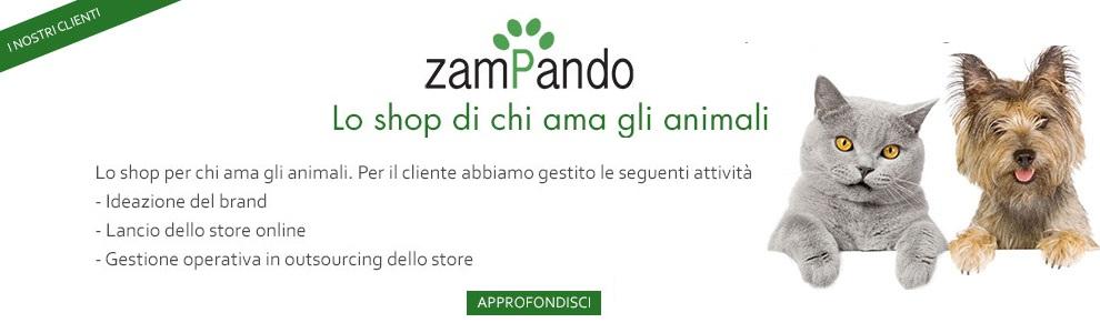 Zampando-banner-cliente-Edevelopment